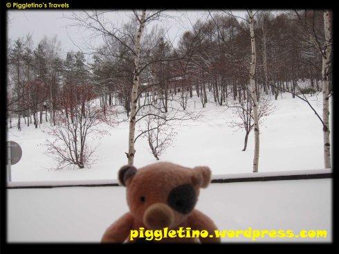 Piggletino155
